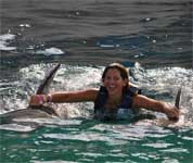 dolphin dorsal ride in the dolphin royal swim at sea life park