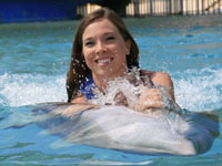 belly ride on dolphin at sea life park hawaii